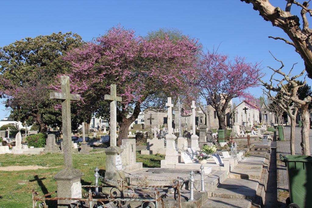 0116-Porto-Cimeterio-de-Agramonte.JPG