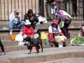 0466-cuzco