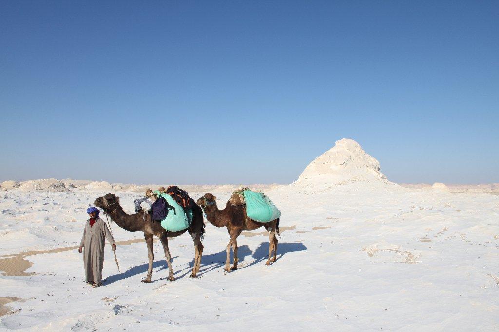 0043-desert-blanc-chamelier-jpg