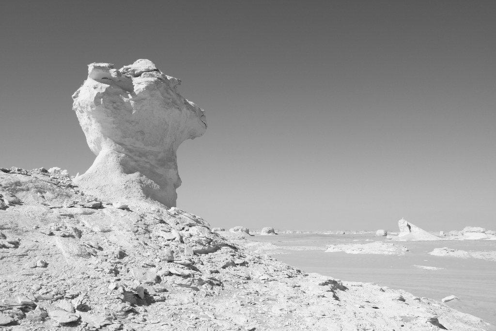 0065-desert-blanc-jpg