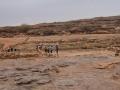 0170-pays-dogon-falaise-de-bandiagara-sangha-marche-jpg