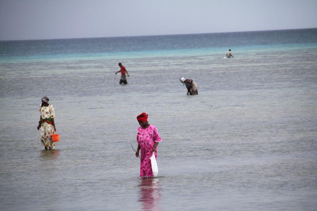 055-Plage-de-Nungwi-travail-des-femmes.JPG